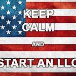 Società LLC americane: cosa sono e come funzionano