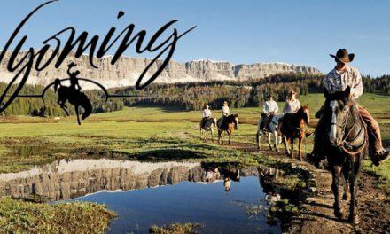 Perchè Costituire la Propria Società LLC in Wyoming?