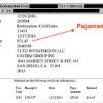 come-investire-taxlien6